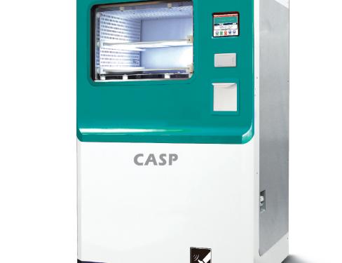 CASP-80