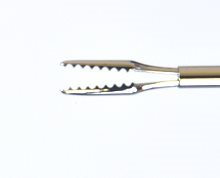 25g Serrated Forceps